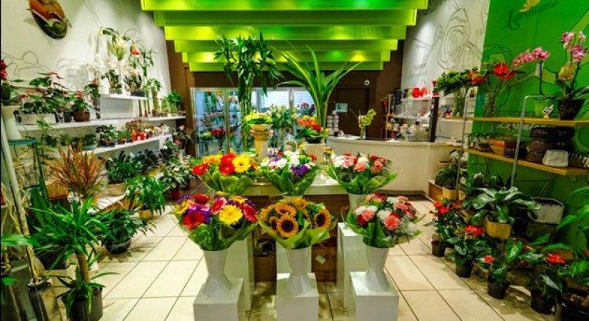 Çiçekçi Dükkanı Açmak İçin Gerekenler Nelerdir Ve Nasıl Açılır?