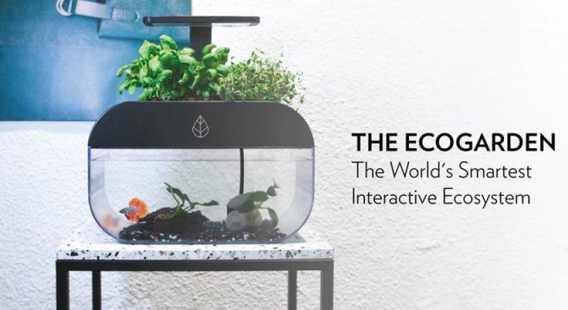 EcoGarden Dünyanın En Akıllı İnteraktif Ekosistemi