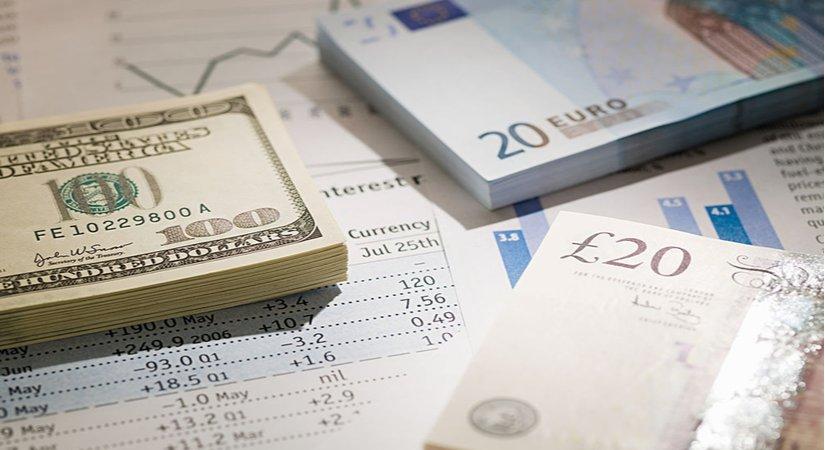 Euro Yorum ve Analizlerine Etki Eden Hususlar