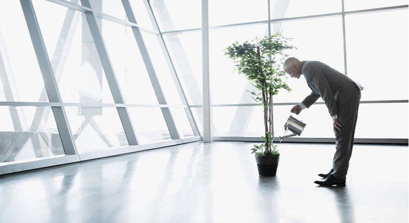 Geleceğe Yönelik En Popüler ve Karlı Yatırım Fikirleri