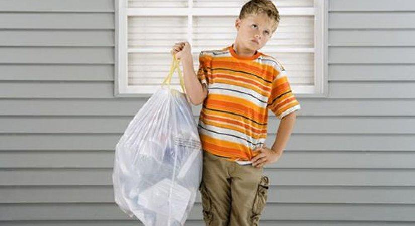 Günlük Çöp Toplama - İş Fikri