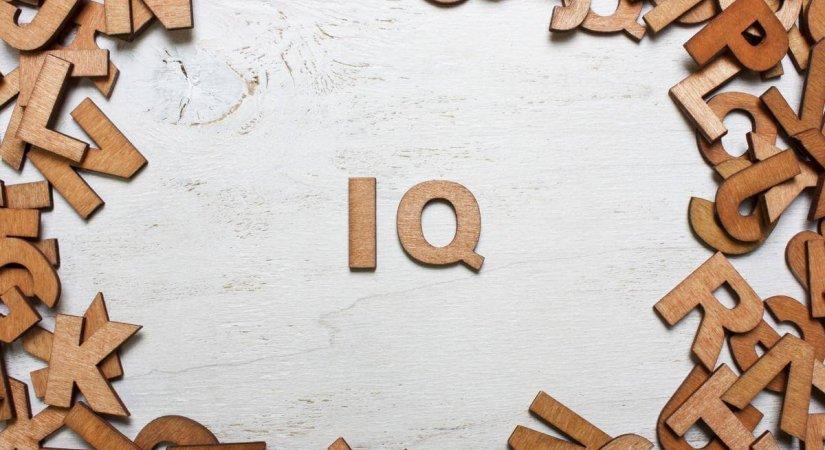 Daha Önce IQ Testi Yaptınız mı?
