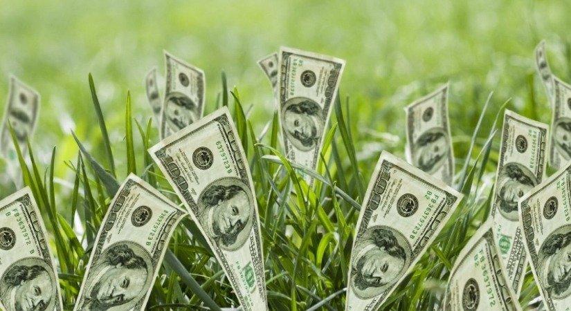 Nasıl Para Kazanılır? Kolay Para Kazanma Yöntemleri