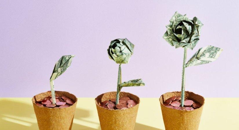 Paranızı Sizin İçin Çalıştırmanın En İyi 3 Yolu