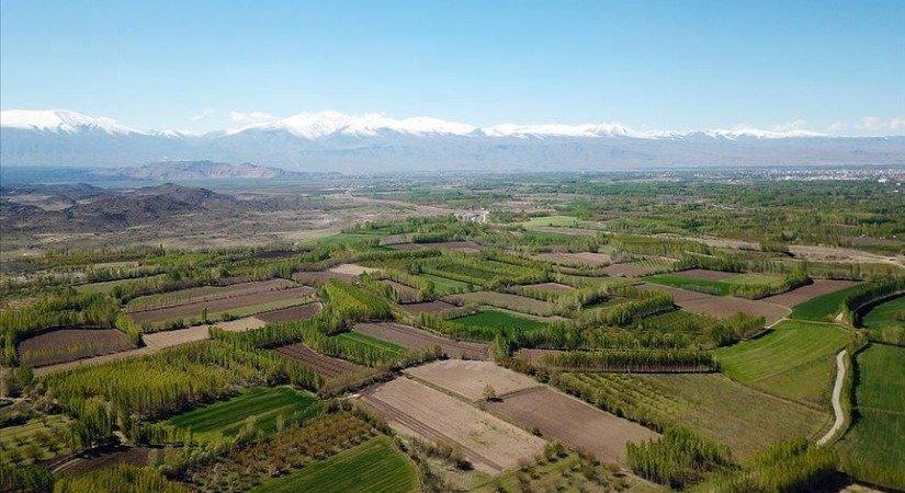 Tarım Kredi Genel Müdürü Poyraz: Çiftçi Kredide Sürpriz Yaşamayacak