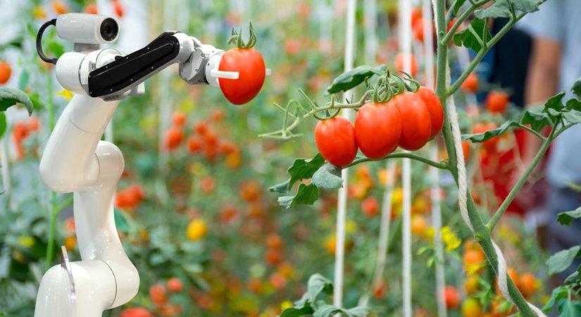 Tarım Sektörü Ar - Ge Çalışmaları TAGEM Aracılığı İle Destekleniyor