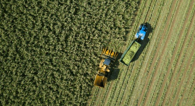 Tarım Sektörüne Sağlanan Desteklemeler