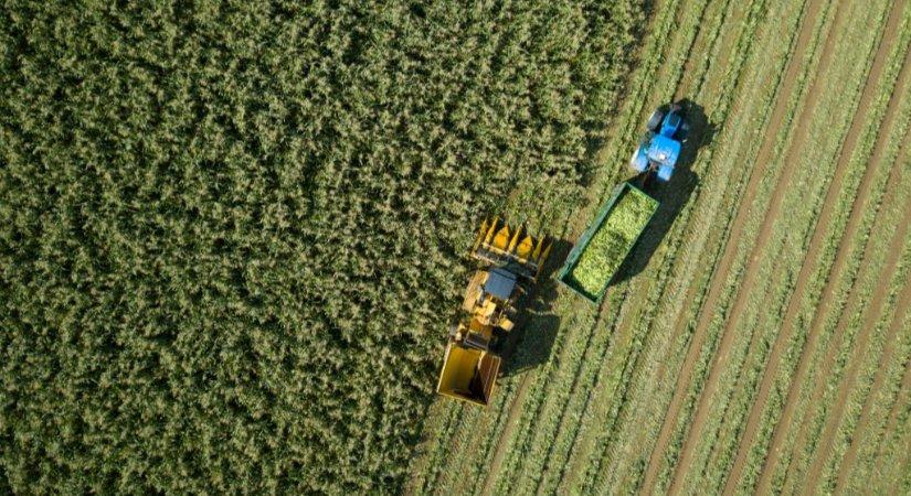 Tarım Sektörüne Verilen Desteklerden Yararlanabilmek için Nasıl Başvuru Yapılır?
