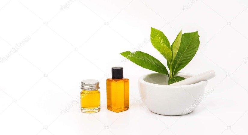 Tıbbi ve Aromatik Şifalı Bitki Yetiştiriciliği ile Para Kazanma