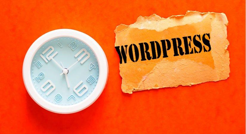 WordPress ile Nasıl Para Kazanılır