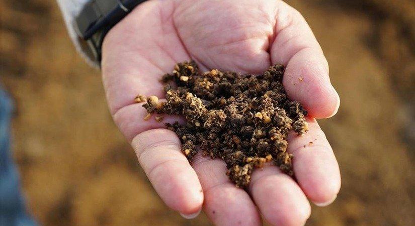 Zeytin Çekirdeğinden Üretilen Çevreci Yakıta Talep Artıyor